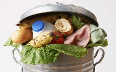 Food waste reduction interventions – Ny artikel i tidskriften Food Policy